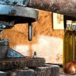 Do zdravlja uz hladno ceđena ulja